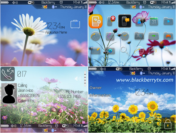 <b>Sun flowers for blackberry 8900 themes</b>