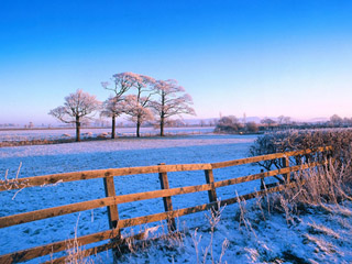 Frosty Countryside