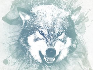 white wolf wallpapers for blackberry storm