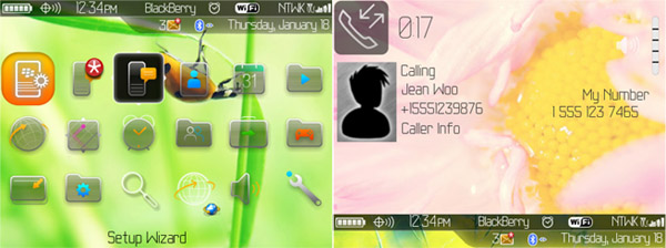 Amazing Flowers os6.0 icons for 89xx os4.6.1 themes - free