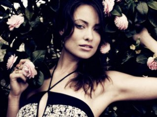 Olivia Wilde Roses wallpapers for blackberry 9780,9800,9900