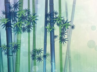 Digital Bamboo for 9105, 9780, 9800 wallpapers