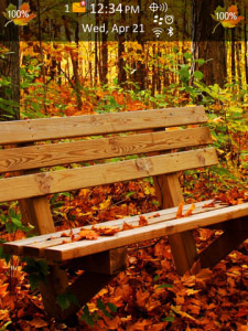 Autumn Forest os6.0 Theme for BlackBerry Torch 9800