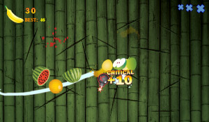 Fruits and Ninja v1.2.1 for playbook games