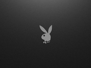 Playboy logo wallpaper for blackberry 9800