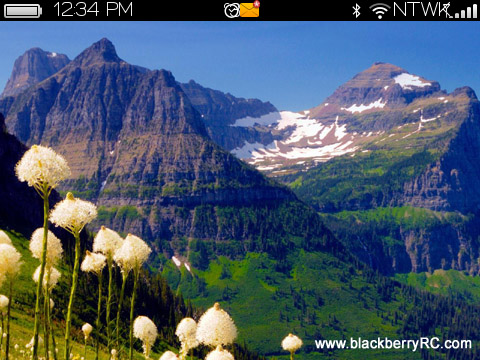 Bing Wall for blackberry 97xx,9650 bold themes