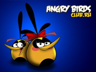 Angry Birds for blackberry wallpapers