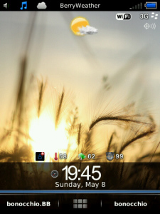Attire for Blackberry Storm 2 95xx themes
