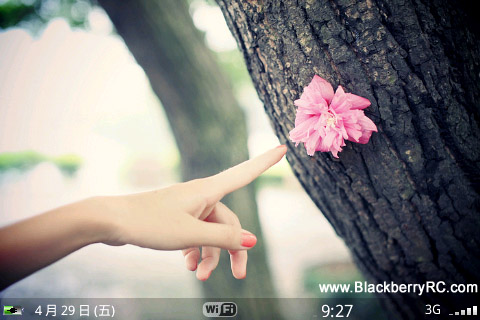 Wallpaper Fans for blackberry 9000 bold theme