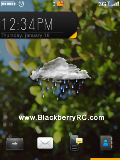 Hornet theme for blackberry 95xx storm model