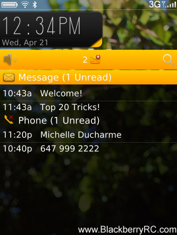 <b>Hornet theme for blackberry 9800 torch themes</b>