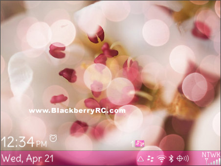 Nice Sparkling theme for blackberry 97xx,9650 os6.0