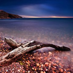 <b>Driftwood for q5,q10,z10 WALLPAPERS</b>