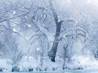 <b>Winter Snowfall wallpaper</b>