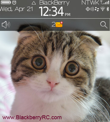 Scottish Fold for BB 91xx,9670 themes