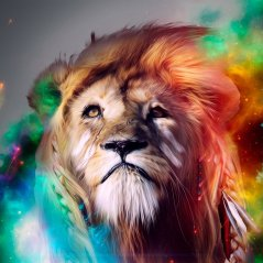 Lion Abstract for blackberry z10 hd wallpaper