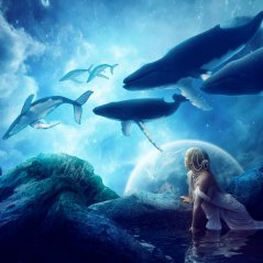 <b>Whales Dream for Blackberry Z15 wallpaper</b>