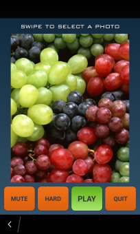<b>Grape Puzzle game</b>