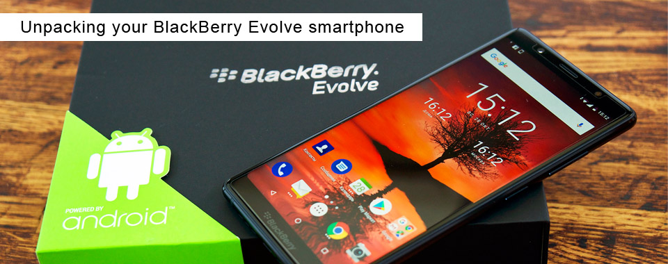 pckeys para blackberry gratis